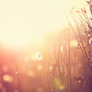 Donner à Dieu – Une Dîme